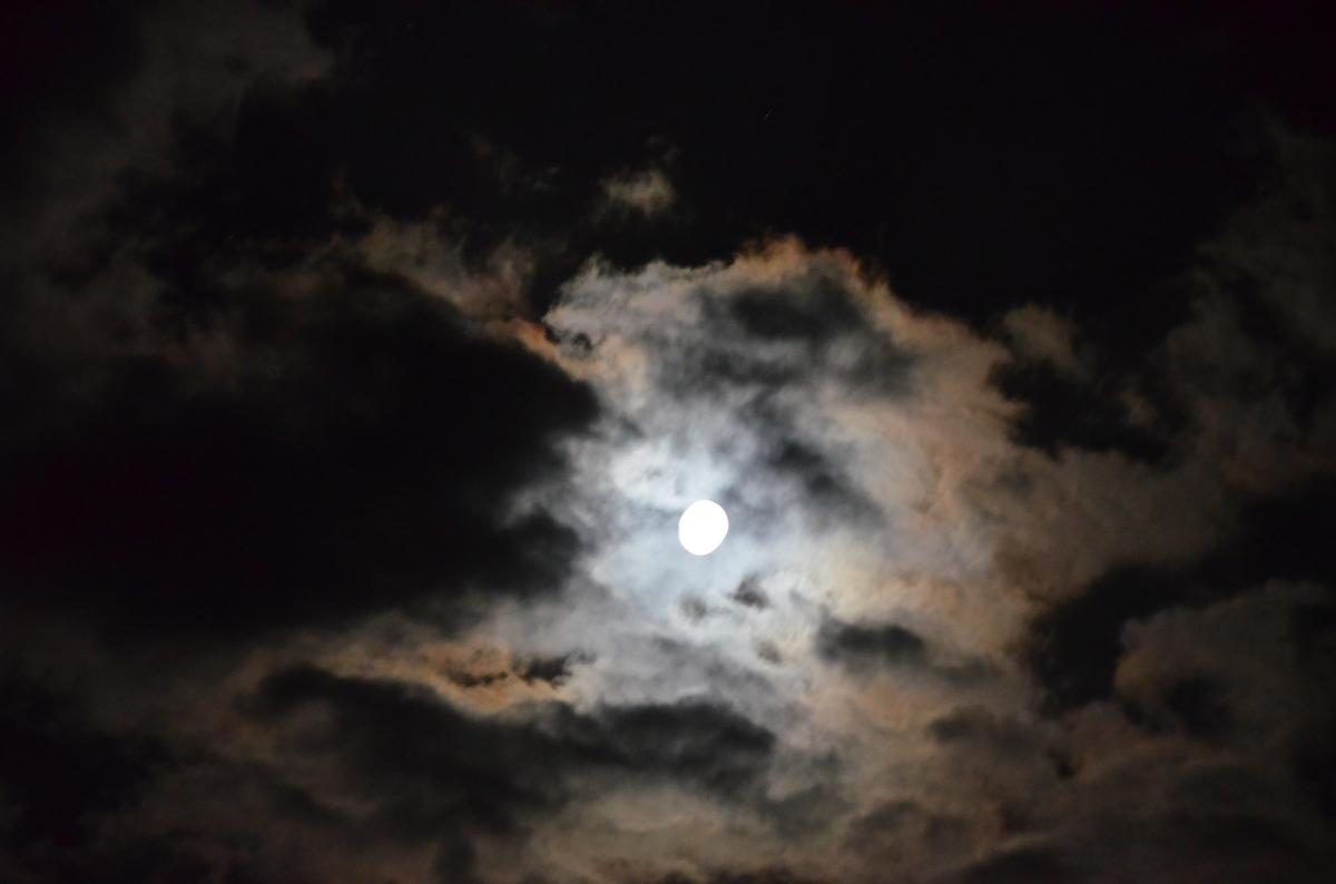 Moonlight on aField